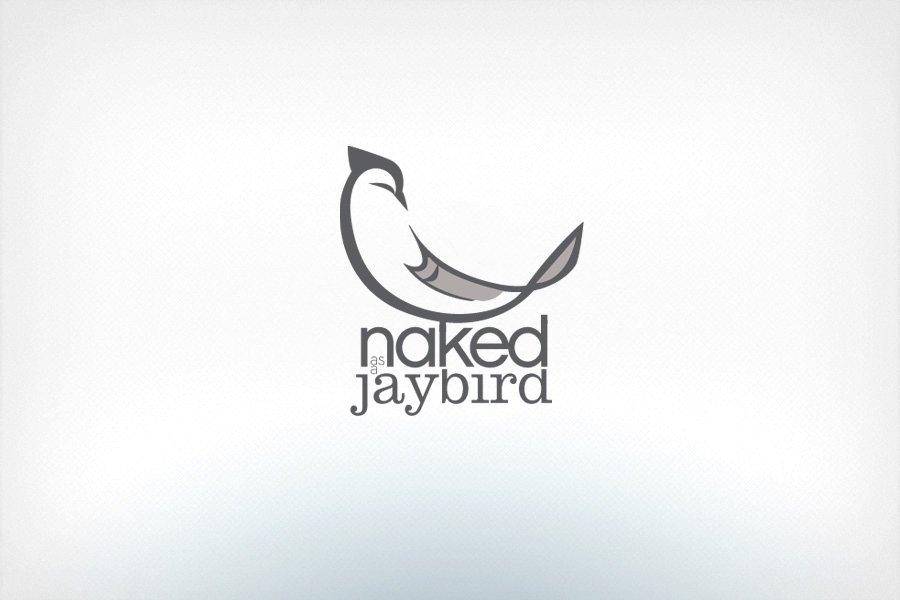 jay_6_bird